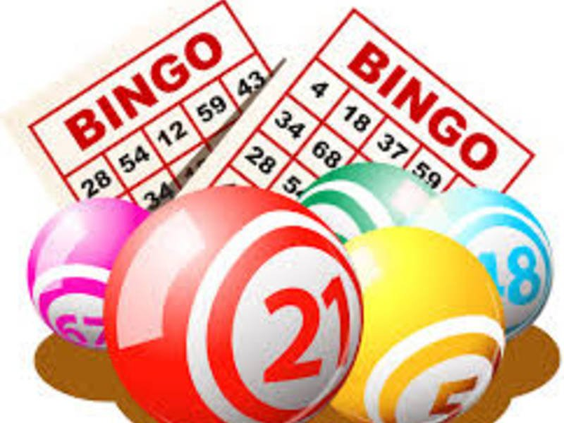 Why You Need To Play Bingo On the web